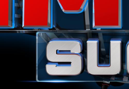 MSS_logodetail
